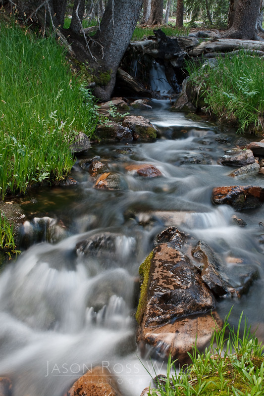 stream, water, slow shutter, Great Basin, National Park, waterfall, nature, Nevada