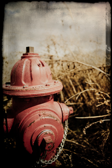 fire hydrant, grass, field, texture, film, edges, red, gold, yellow