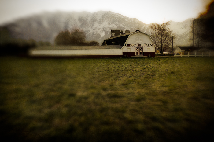 barn, grass, Cherry Hill Farm, lensbaby, geneva, road, sign, letters, Provo, Utah, Orem