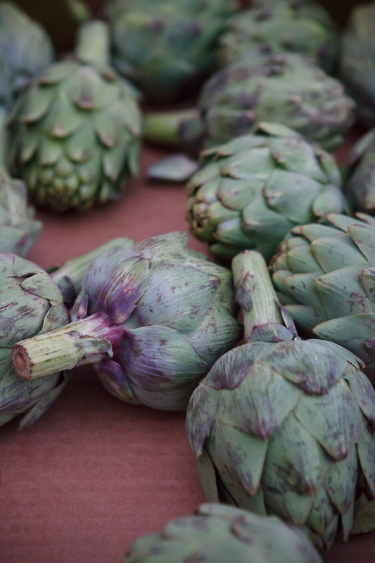 Artichokes at the Provo Fresh Wednesday Farmer's Market in Downtown Provo
